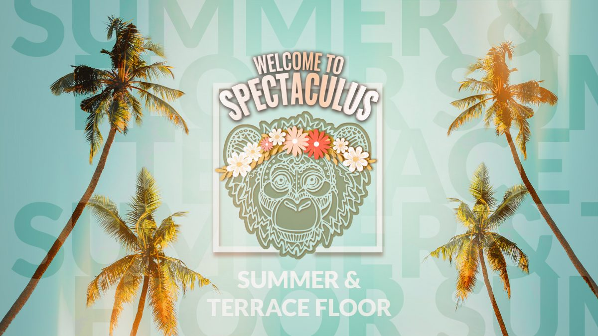 SA/20/07/19 – SPECTACULUS SUMMER & TERRACE FLOOR